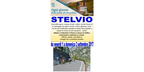 Ciclovacanze 2017   Stelvio